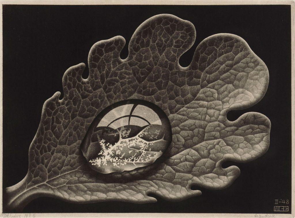 M.C. Escher, Drop (Dewdrop), mezzotint, 1948