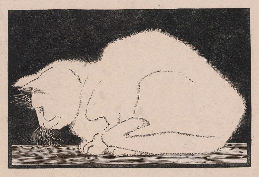 M.C. Escher, Witte poes, houtsnede, 1919