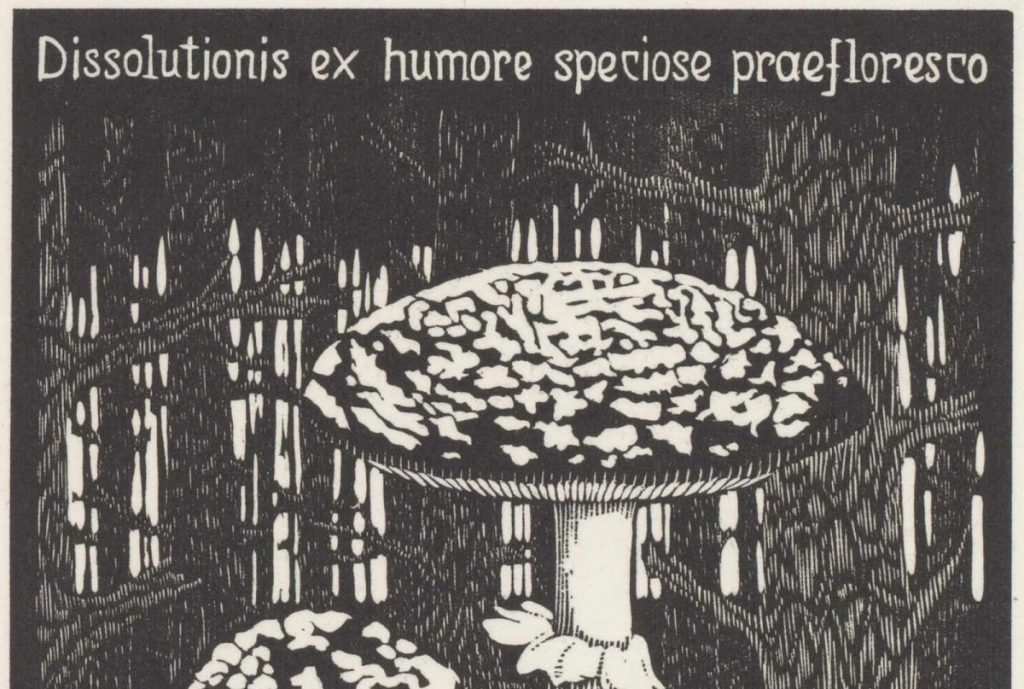 M.C. Escher, Toadstool (Emblemata XVI) woodcut, between March and June 1931 (detail)