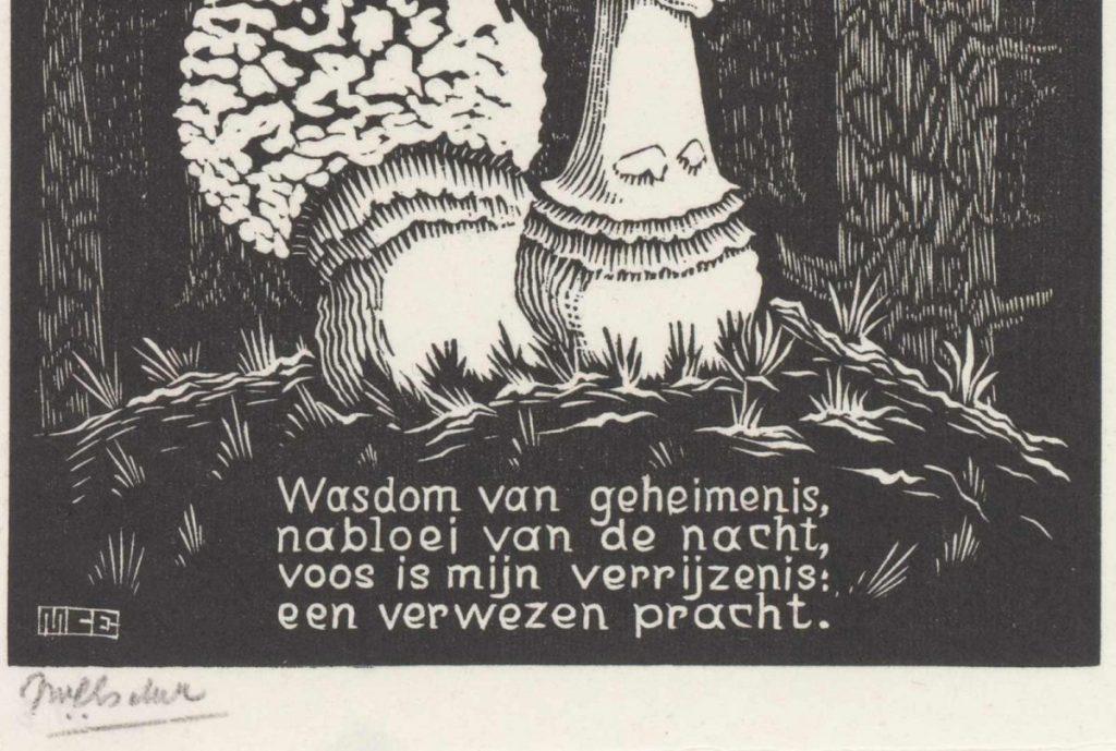 M.C. Escher, XVI, Paddenstoel, houtsnede, tussen maart en juni 1931 (detail)