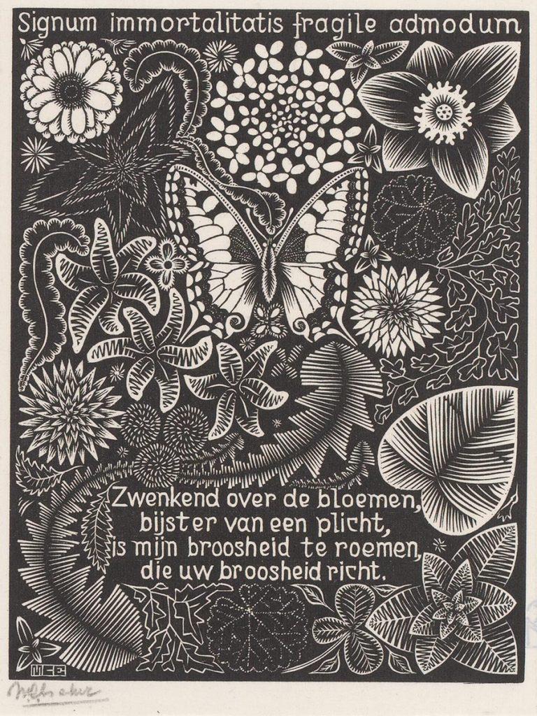 M.C. Escher, Vlinder, houtsnede, tussen maart en juni 1931